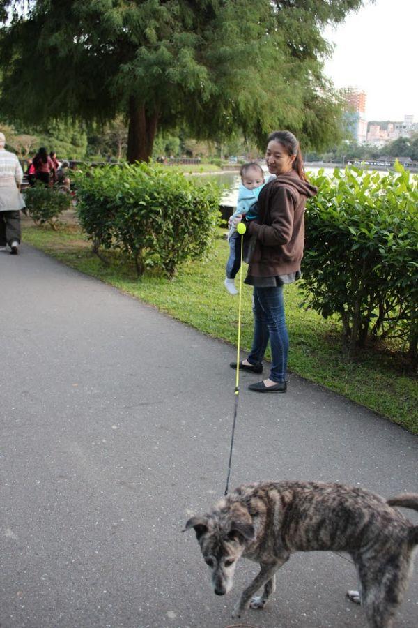 【使用者體驗推薦文】Lishinu2利斯努第二代腕式伸縮牽繩|有毛小孩必備物品推薦|蹓狗也可以很輕鬆