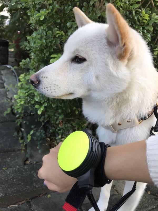 【使用者體驗推薦文】利斯努第二代腕式伸縮牽繩