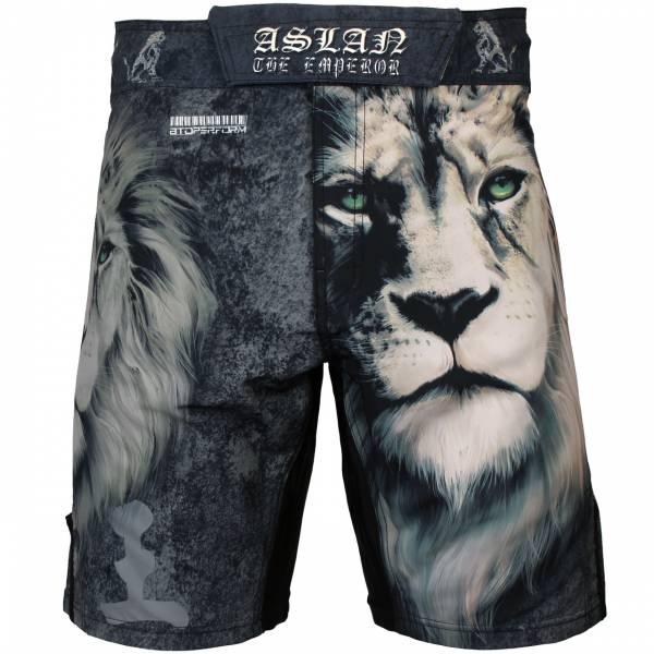 ASLAN 亞斯藍 [FS-30] MMA 短褲 / 格鬥褲