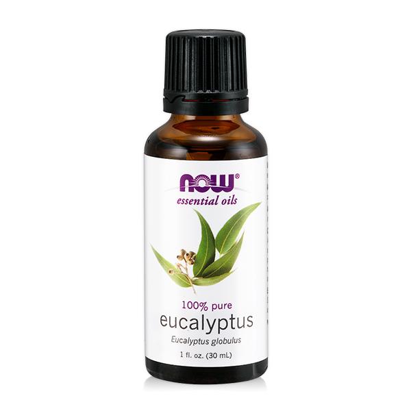 【NOW】藍膠尤加利精油(30 ml) Eucalyptus Globulus Oil 尤加利 精油,尤加利 功效,提神,保養,放鬆,壓力,按摩,緊張,抗菌,舒緩,now,精油,藍膠尤加利
