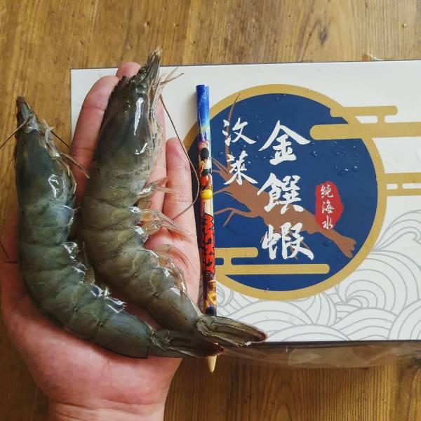 汶萊皇室御用白蝦(3盒一組)-巨無霸等級