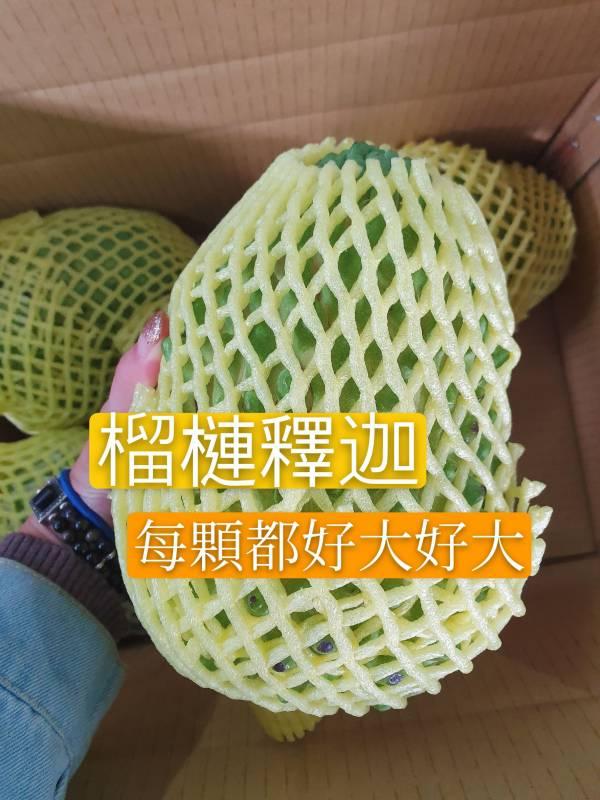 台灣榴槤釋迦(1箱免運)