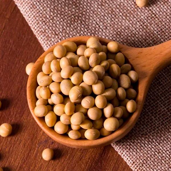 中都黃豆(高雄選十號)500g-全素