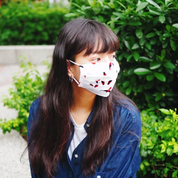【現貨】摺式布口罩_可放濾材_大人版 口罩,布口罩,防疫
