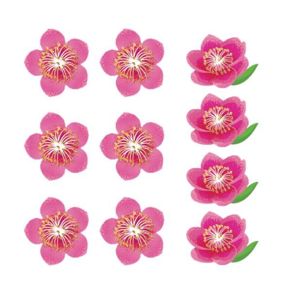 春聯-滿屋旺桃花