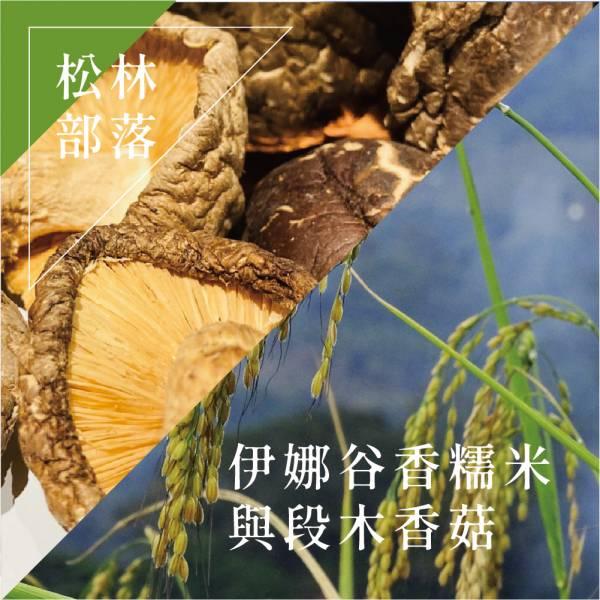 S001松林部落段木香菇(大朵)+伊娜谷香糯米 / 特價 999元/組