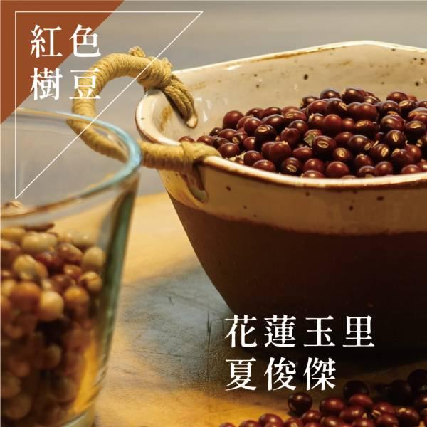 勇士豆- 紅樹豆