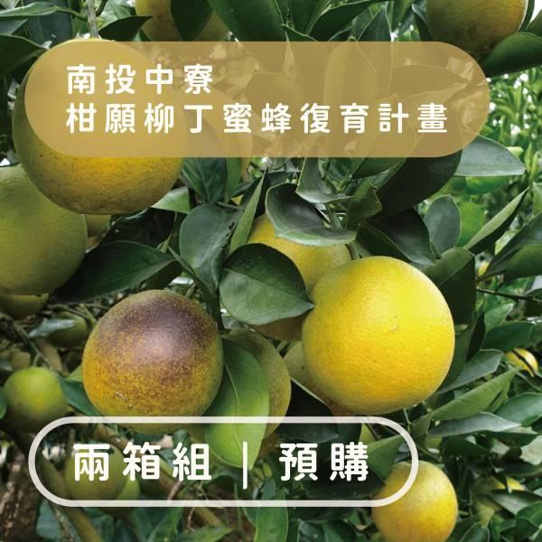 【產地直送】兩箱組-柑願柳丁計畫
