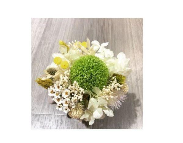 綠野仙蹤-永恆桌花