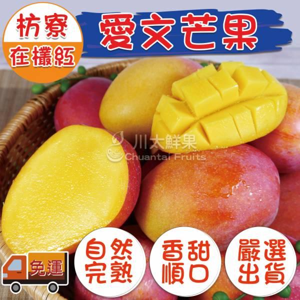 枋寮-在欉紅愛文芒果、多規格(免運) 愛文芒果,芒果,在欉紅芒果,台灣芒果
