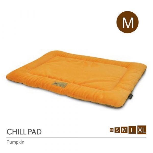【頂級寵物床墊、坐墊】P.L.A.Y. 四季舒活墊-M號(共6色)