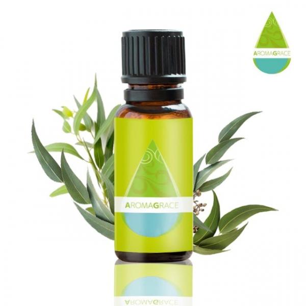【AromaGrace】檸檬尤加利-單方精油-10ml AromaGrace,檸檬尤加利,精油,香氛,單方精油,複方精油,IFA,芳療師,