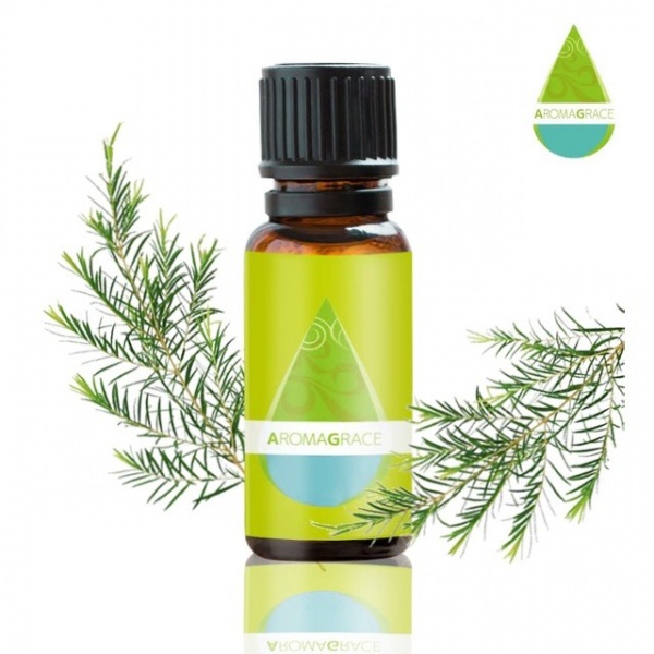【AromaGrace】經典茶樹-單方精油-10ml AromaGrace,茶樹,精油,香氛,單方精油,複方精油,IFA,芳療師,