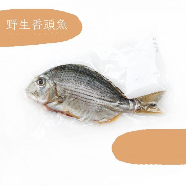 香頭魚300g±10%