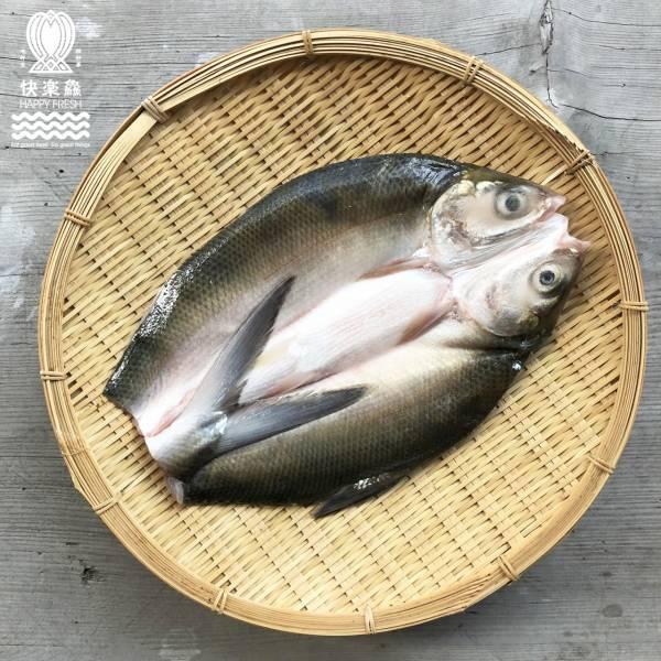台灣養殖無刺虱目魚(大) 600g±10%