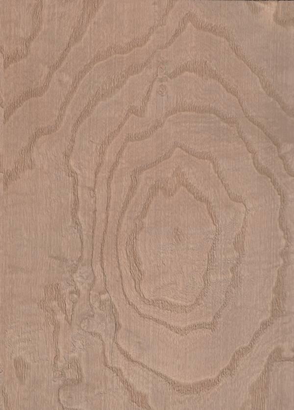 塗裝木皮板-圓覺意境(樹瘤類/浮雕鋼刷) 木皮板,塗裝板,木地板,木皮不織布,室內裝潢設計材料,健康綠建材,裝潢建材,室內設計,北歐風,美式風,奶茶色,棕色裝潢,樹榴,樹瘤
