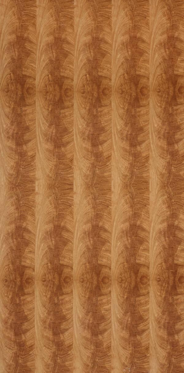 實木皮板-黃金花(黃金花木/排骨紋) 豪宅,裝潢建材,木皮板,塗裝板,木地板,木皮不織布,室內裝潢設計材料,天然綠建材