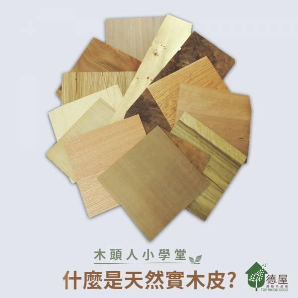 什麼是木皮? 裝潢,健康,德屋建材,木皮板,特色,黃金比例厚度