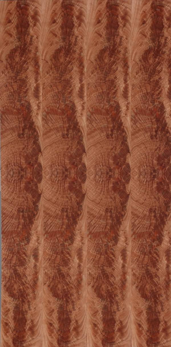 實木皮板-君子蘭(歐克曼木/排骨紋/爆竹紋) 豪宅,裝潢建材,木皮板,塗裝板,木地板,木皮不織布,室內裝潢設計材料,天然綠建材