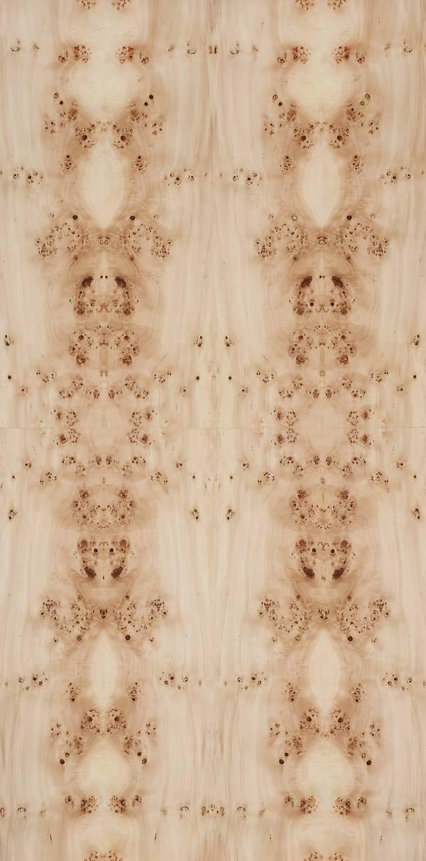 實木皮板-繡球花(歐洲紅花樟/樹瘤類) 豪宅,裝潢建材,木皮板,塗裝板,木地板,木皮不織布,室內裝潢設計材料,天然綠建材,建材,樹瘤,樹榴,樹瘤木皮板,樹榴木皮板,室內設計,空間設計