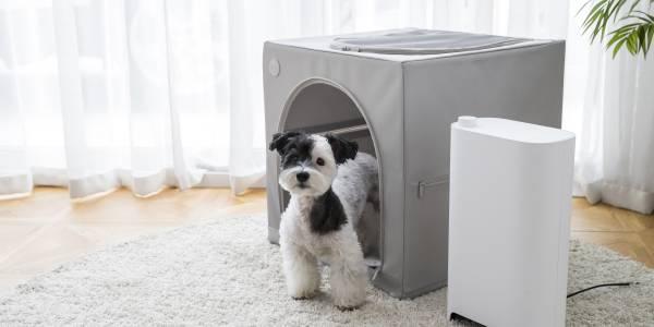 duit dryhouse寵物窩 + 烘乾機二合一 寵物烘乾機,duit,烘乾機,狗狗烘乾機,貓咪烘乾,寵物洗澡